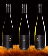 diseno-etiqueta-vino-minimalista-056